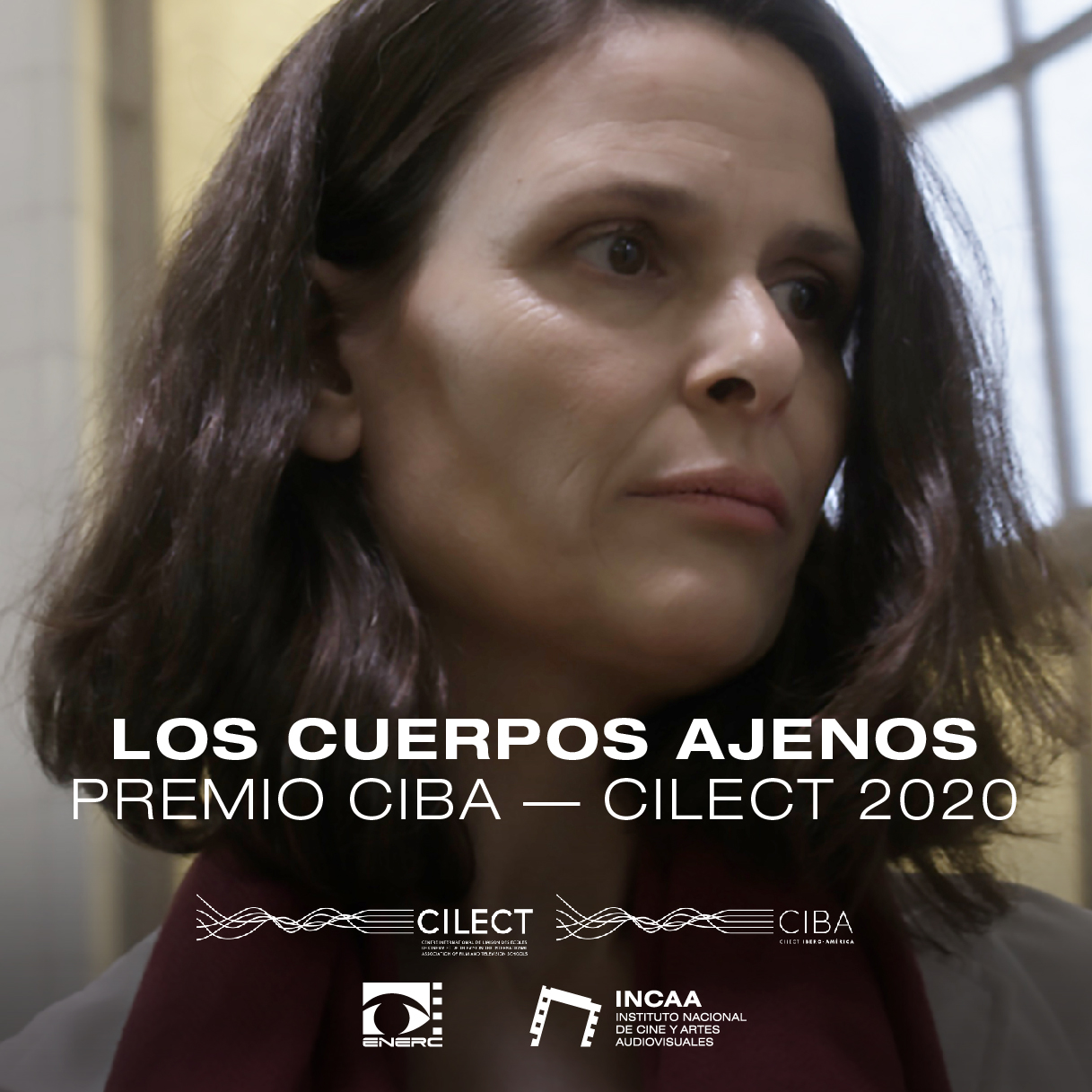 Premio CILECT Ibero American Association (CIBA)